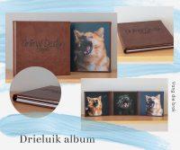 Drieluik-album