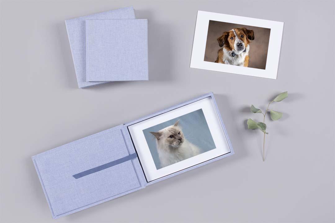 Webwinkel Animal Design Fotografie foliobox studiofotografie